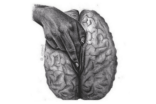 Sexual-brain-large